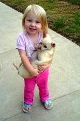 EFT for dog agressive to children
