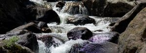 Mountain stream over rocks