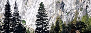 Yosemite Oct10 (23)