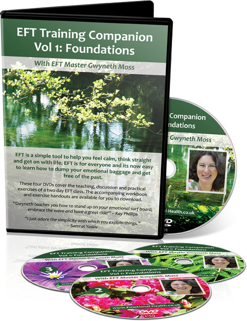 EFT Training Companion Volume1 Foundations